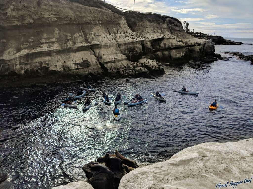 Kayaks in La Jolla Cove, San Diego, California, USA