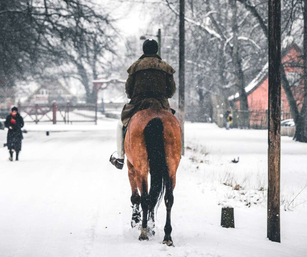 winter horse riding