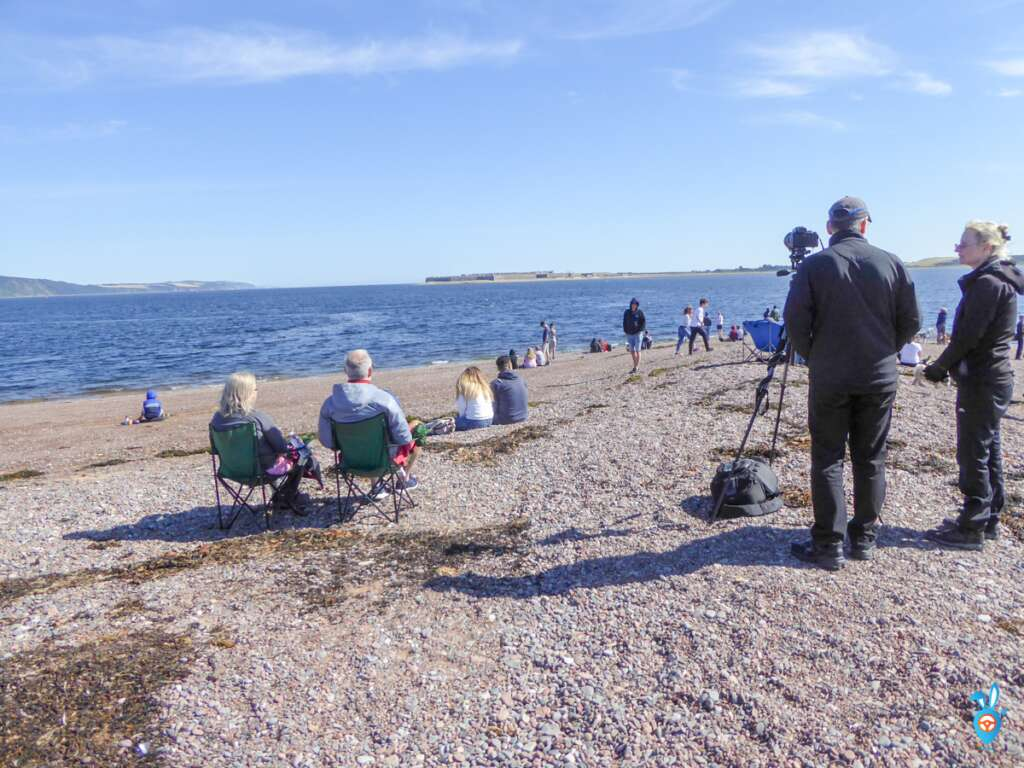 Chanonry Point Dolphin watching ready