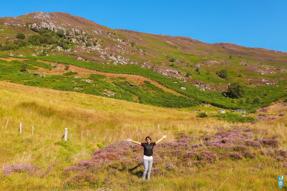 Loch Carron Scotland Roadtrip