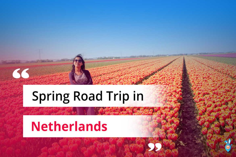 Spring Road Trip in Netherlands
