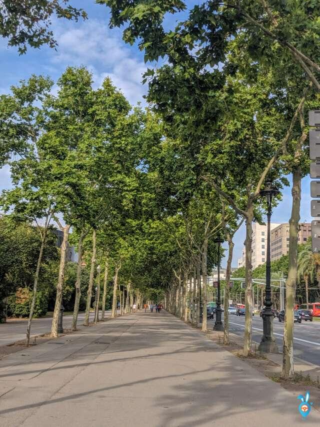 One Week in Barcelona in Summer - Barcelona Walkway