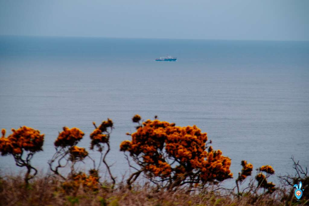 Cornwall coastal scenery with a ship