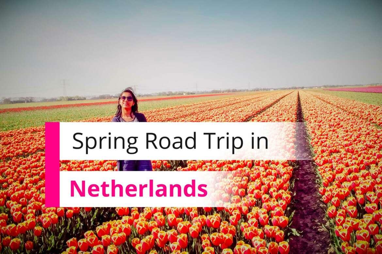 Spring Roadtrip Netherlands Tulips Field Giethoorn