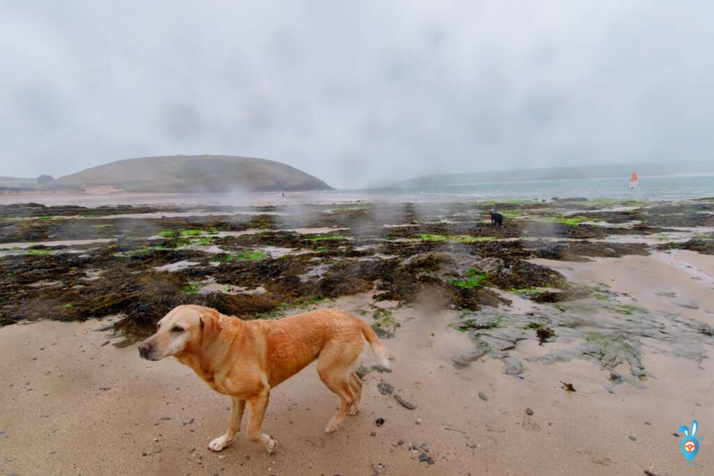 olzeath beach, Cornwall